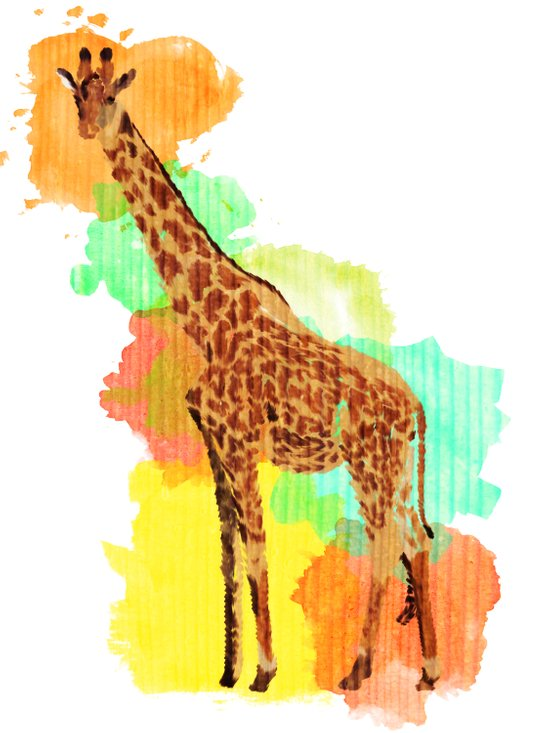 GIRAFFE: THE GENTLE GIANT Art Print