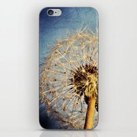 Dandelion Texture iPhone & iPod Skin