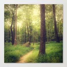 Dreamy Fairy Forest Canvas Print