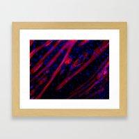Microscopic Muscle Cells Framed Art Print