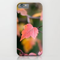 iPhone & iPod Case featuring Autumn Red by Katie Kirkland Photography