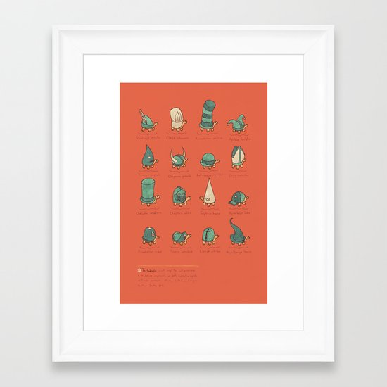 A Study of Turtles Framed Art Print