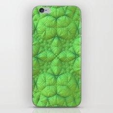 Soft Sell II iPhone & iPod Skin
