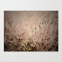 What's Left of the Past Canvas Print
