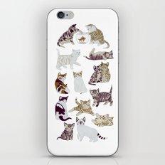 Little Kittens iPhone & iPod Skin