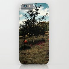 Fall Apples And Pumpkins iPhone 6 Slim Case