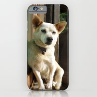sleepy dog iPhone 6 Slim Case
