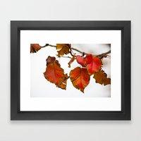 Autumn On A Branch Framed Art Print