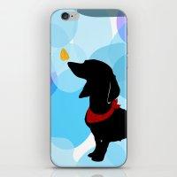 Dachshund Dog Art Print iPhone & iPod Skin