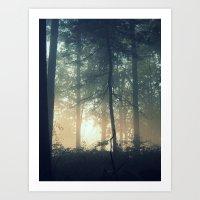 Find Serenity Art Print