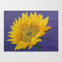 Little bit of Sunshine Canvas Print