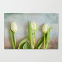 Tulips - JUSTART © Canvas Print