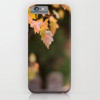 iPhone & iPod Case featuring Autumn Orange by Katie Kirkland Photography