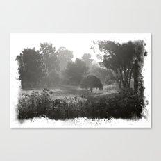 Foggy Path Canvas Print