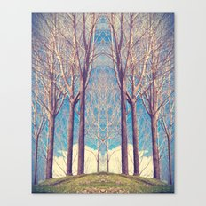 The nature of symmetry  Canvas Print