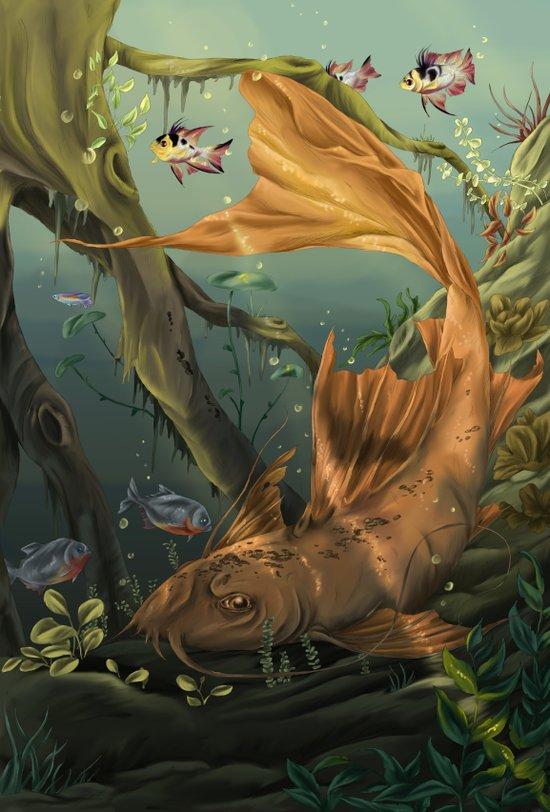 Golden Catfish  Canvas Print