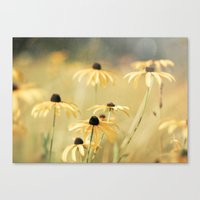 Endless Summer Canvas Print