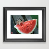 Watermelon Chipmunk Framed Art Print