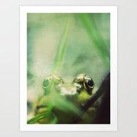 Frog's Eye View Art Print