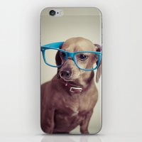 Dogs think they're sooo smart... iPhone & iPod Skin