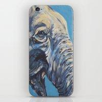 Mike's Elephant iPhone & iPod Skin