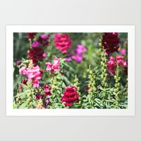 Garden Of Whimsy Art Print