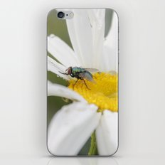 Flower & Fly iPhone & iPod Skin