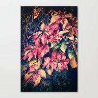 Colorful Vine Canvas Print