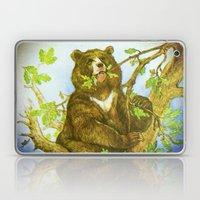 Bear On A Tree Laptop & iPad Skin