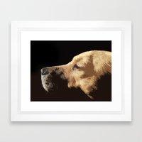 Van Dog Framed Art Print