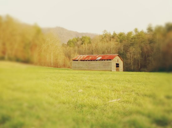 Spring Barn in a Tennessee Field Art Print