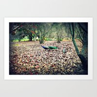 Peacock in the Woods Art Print