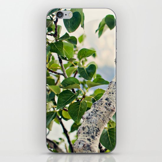 Under the Green Tree iPhone & iPod Skin