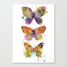 3 farfalle Canvas Print