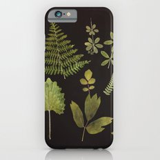 Plants + Leaves 5 Slim Case iPhone 6s