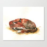 Sleeping Fox Watercolor Canvas Print
