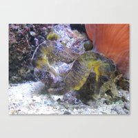 Sea Horses Canvas Print