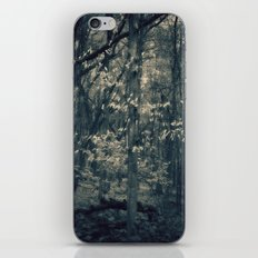 Still  iPhone & iPod Skin