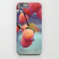 Persimmons In The Rain iPhone 6 Slim Case