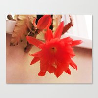 Blooming Lovely Canvas Print