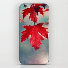 ĵurnalo iPhone & iPod Skin