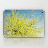 Burst Forth Laptop & iPad Skin