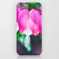 Heart of My Hearts.  Bleeding Hearts Photograph.  Macro Photography iPhone 6 Slim Case
