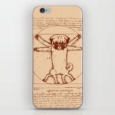 Vitruvian pug iPhone & iPod Skin