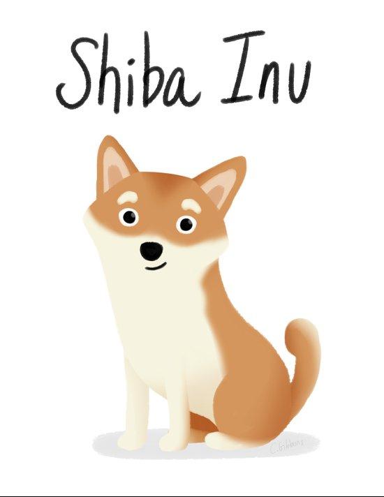 Shiba Inu - Cute Dog Series Canvas Print