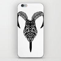 Arien Owl iPhone & iPod Skin