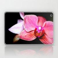 Orchid 3 Laptop & iPad Skin
