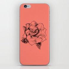Rose on Rose iPhone & iPod Skin