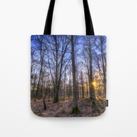 The Sun Ray Forest Tote Bag
