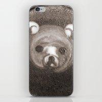 Bearchino iPhone & iPod Skin